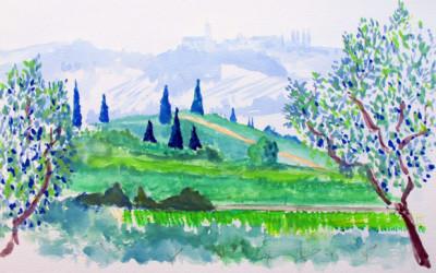 Olive trees near Lake Garda