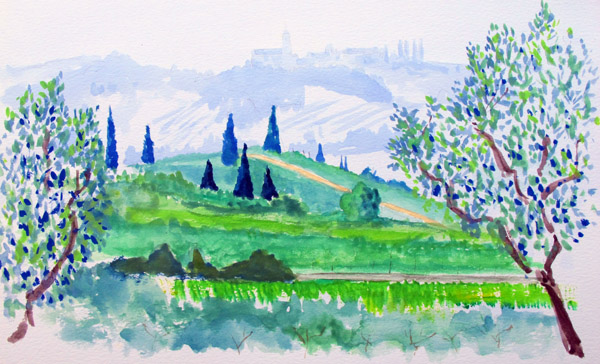 Olive trees near Lake Garda